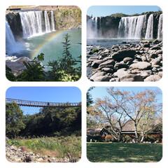 お出かけ/原尻の滝/滝にかかる虹/吊り橋/秋晴れ 今日は、大分の原尻の滝を 見てきました。…(1枚目)