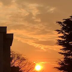 夕陽/夕焼け/夕暮れ/部屋から見る夕陽/暮らし/癒し 今空 16:40 部屋の中に 夕陽が差し…(2枚目)