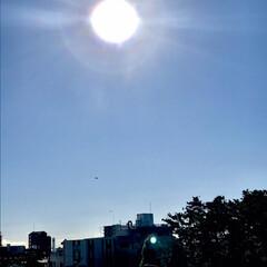 空/青空/雲ひとつない青空/太陽 雲ひとつない青空☀️ ((o(´∀`)o…