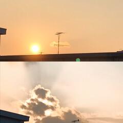 暮らし/空/夕陽/癒しの時間 久々に見た夕陽 忙しかったし、暑かったけ…
