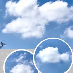 ボーッとする時間/雲/空 空を見上げれば、 ワンちゃんが、 かけて…(1枚目)