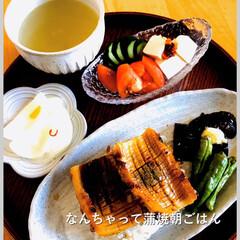 朝食/竹輪蒲焼/暮らし/節約/おうちごはん おはようございます。 今朝はちょ〜手抜き…