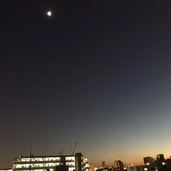 夜景/街灯り/月/空  マンションの階段から 綺麗だったので📱…