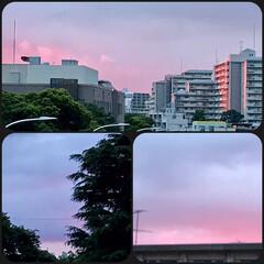 「今空 19:00 ピンクとブルーの淡い色…」(1枚目)