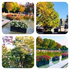 上野公園/紅葉/散策/西郷隆盛の像/噴水の池/花が綺麗 今日は、お天気がいいので 友人と上野公園…