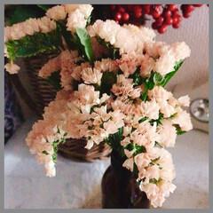 花/花のある暮らし/キッチンにも花を/癒し/くらし キッチンの脇には、 暖かい色、淡いオレン…