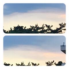空/朝焼け/暮らし/窓からの眺め 夕方迄、バタンキュー 珍しく寝込んでしま…