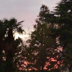 「PM 5:30の空  真っ赤な夕焼け、 …」(5枚目)