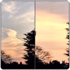 暮らし/夕暮れの空/風景/部屋から見る風景 3月1日 夕暮れの空 今日も一日お疲れさ…(1枚目)