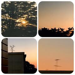 夕陽/夕焼け/空/ベランダから見る夕陽/暮らし/癒し/... 10/1    18:00頃の 沈む夕陽…