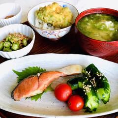 お家ごはん/朝ごはん/焼魚定食/残り物で天丼/野菜好き/魚好き/... 朝ごはん  焼魚定食  鮭、 蛇腹胡瓜、…