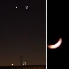 月/金星/夜空 今夜の月は、 綺麗な赤みがかったピンクで…(1枚目)