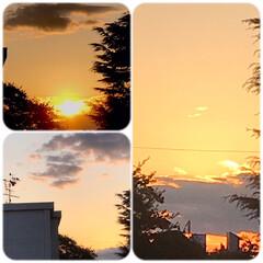 夕暮れ/夕焼け/空/部屋からの眺め/暮らし 11/11   PM4時  真っ赤な夕陽…