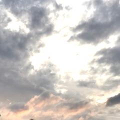 空/夕暮れ/梅雨の晴れ間 夕方晴れてきて、青空も… ゆうやけではな…