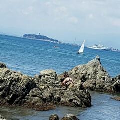 海の家/のんびり休日/海 昨日海へ  海の家も例年よりは少ないけど…(2枚目)