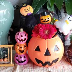 ハロウィン飾り/ハロウィン雑貨/リミとも部/リミアのある暮らし/我が家の玄関/halloween/... 今日も素敵な一日になりますように(♥Ü♥…