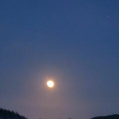 お月様/夜空 ღ㋔㋡㋕㋹㋚㋮ღ   綺麗な お月様🌕💖