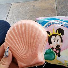ストロベリー/アイスもなか/東京ディズニーシー/夢の国/フォロー大歓迎 夢の国で食べた アイスモナカ🍦ストロベリ…