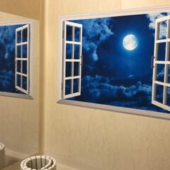 住まい お風呂場には、3Dポスターとガラスフィル…