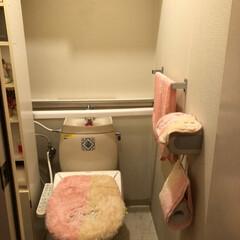 トイレ/ウォシュレット/賃貸/タンクレス/DIY/100均 とりあえず、トイレですが… 賃貸約8年住…