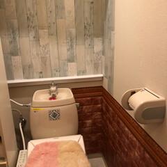 トイレ/ウォシュレット/賃貸/タンクレス/DIY/100均 とりあえず、トイレですが… 賃貸約8年住…(2枚目)