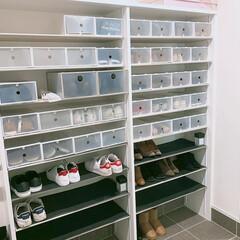 収納 #収納箱 #シューズ#100.../靴の収納 乱雑になりがちの靴箱も100円ショップア…