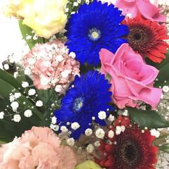 花束/フラワー 花のある生活はいいですね。 次のステージ…