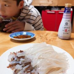 我が家のテーブル 朝イカ食べ放題🦑🦑(1枚目)