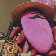 やきえもん/ピンク/これもピンク!?/焼き芋ファクトリー/茨城県/お髭/... やきえもんのぬいぐるみです。 茨城県の焼…