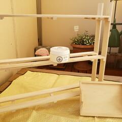 ソリッドカラー 90g SC-01 ホワイト 水性ペースト状ニス ウッドアトリエ  ワックス感覚で使える  屋内木部用  | 和信ペイント(Washi Paint)(ニス、ステイン)を使ったクチコミ「まず、3女に作った棚とトレーを塗装しよう…」