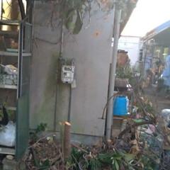 怒り/レシプロソー/マキタ/タダバタラキ/汚部屋/撤去/... ザ ジャングル(-_-;)  こちらは …(6枚目)