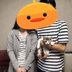 ありがとう/里親/保護猫/令和の一枚/LIMIAペット同好会/にゃんこ同好会 日曜日、保護猫2匹の里親に なってくれた…