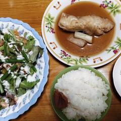魚/LIMIAごはんクラブ/おうちごはんクラブ/暮らし/わたしのごはん 今日は 魚が食べたくて 冷凍してた赤魚煮…