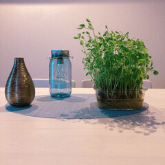 机/テーブル/ホワイトコーディネート/ルームコーディネート/植物/コーディネート/... 引っ越ししてきて机も新しく新調しました。…