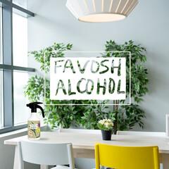 FAVOSH/FAVOSHアルコール/ファボッシュ/ファボッシュアルコール/キッチン/お弁当箱/... FAVOSH(ファボッシュ)は、「お気に…