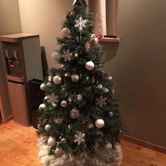 ラコレ/フランフラン/クリスマス/クリスマスツリー/スリーコインズ/クリスマス2019/... 今年は150センチの松ぼっくり付ツリーを…(2枚目)