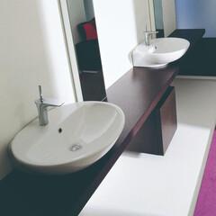 セラトレーディング/洗面ボウル/洗面器/洗面所/バスルーム/住まい/... 広々としたラグジュアリー空間にもよく合う…