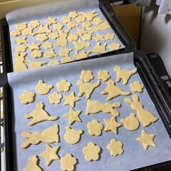 ホームメイド/手作りクッキー/クッキング/クッキー 2020.1.4🥳土曜日 末っ子、今日か…
