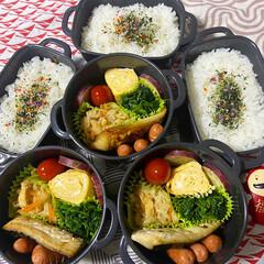 お弁当 お弁当3日分♫いっきにpostしちゃう😅(1枚目)