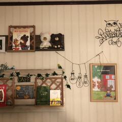 セキセイインコ/ワイヤーアート/絵本/スノコディスプレイ/すのこリメイク/雑貨/... お気に入りを飾る♪  ダイソーで買ったセ…