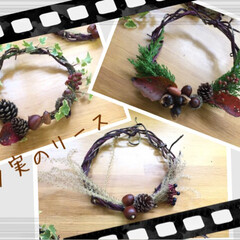 秋/クリスマスリース/0円リース/アイビー/千日紅/さつまいものツル/... 芋のツルに木の実などを付けてリースにしま…