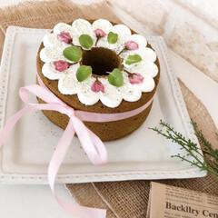ケーキ/スイーツ/カフェ/さくら/手作りお菓子/ケーキ作り/... さくら抹茶シフォンケーキ💗  シフォンケ…