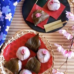 和菓子/手作りお菓子/グルメ/お菓子作り/Seria/ひな祭り/... 人生初の和菓子作り🤣 大好きなさくらもち…