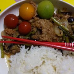 晩御飯/自炊/お家ご飯 とある日の晩御飯達 かき揚げには、白だし…