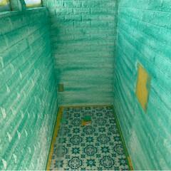父ちゃん叱られる/モンスターズインク/トイレの壁/DIY/リフォーム せっかく塗装できる ウレタンレンガ風の …