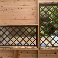 ガラスの代用で/勝手の良い倉庫/DIY 作り直し中の小屋?物置です 笑 低予算で…(2枚目)