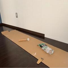 ソフト巾木/バスルーム 冷たくない/キッチンの収納 ほぼ0/バスルーム床/キッチン/リフォーム バスルームの床🛁施工完了👍 ついでにシャ…(3枚目)