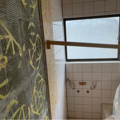 ガラスフィルム/風呂のリフォーム/奥様はピンク嫌い/リフォーム お風呂のタイルが浮いて😳 ボッコボコだっ…
