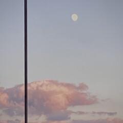 夕焼け雲/と/白い月 〝えぇ~こんな色してないよ~😗〟って 絵…