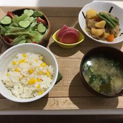 旬のお野菜/おうちごはん 今年初のとうもろこしごはん🌽 実家産の新…